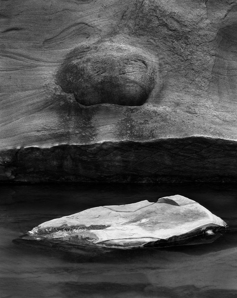 Yin/Yang, Shore Acres, 1985 by Stu Levy
