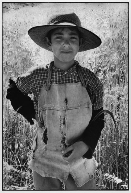 Young farmer with sickle Sicily Italy, 1974 by Leonard Freed