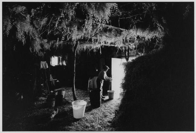 Shepherd in mountain hut making cheese, Madonie Mountains, Sicily, Italy, 1974 by Leonard Freed