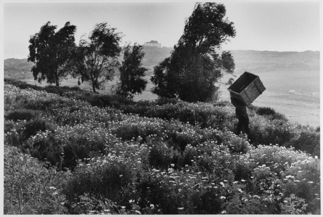 Man carries empty box up hill, Sicily, Italy, 1975 by Leonard Freed