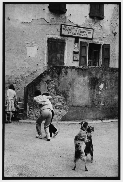 Dogs Dancing, Cote D'azur, France, 1980 by Leonard Freed