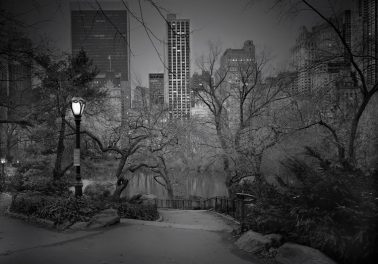 South View #2, 2012 by Michael Massaia