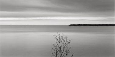 Tree, Lake Superior, 2007 by Brian Kosoff