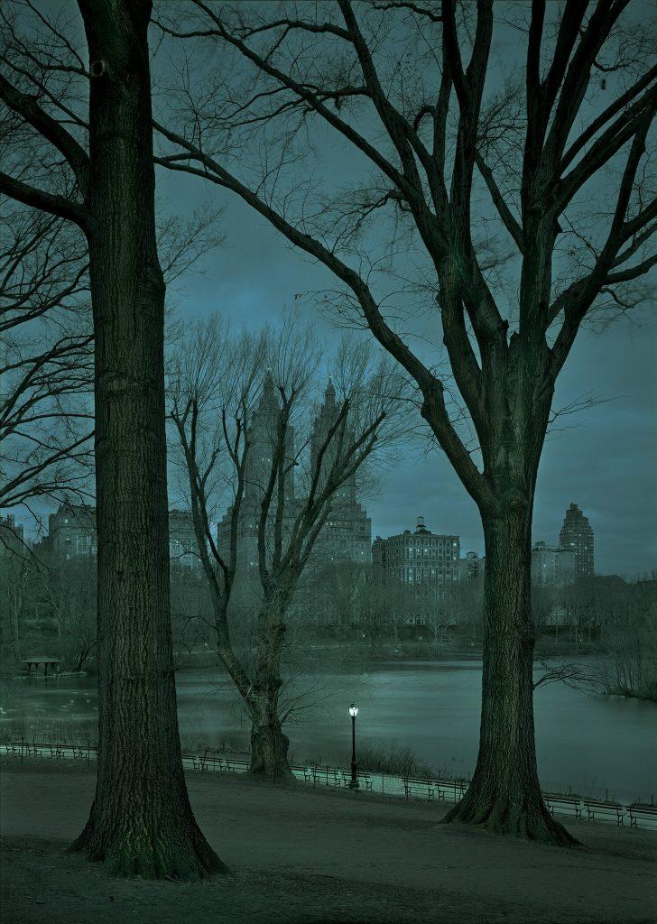 Michael Massaia: January Dawn #1[alternative negative], NYC, 2016