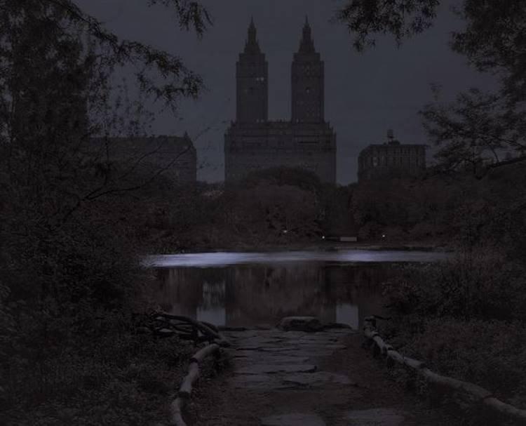 Night Fall in the Ramble, New York City